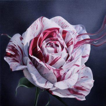 """Ausstellung """"Blütenträume"""""""